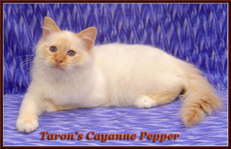 Taron's%20Cayanne%20Pepper